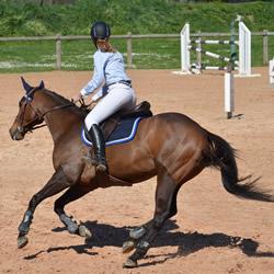 scuola-di-equitazione